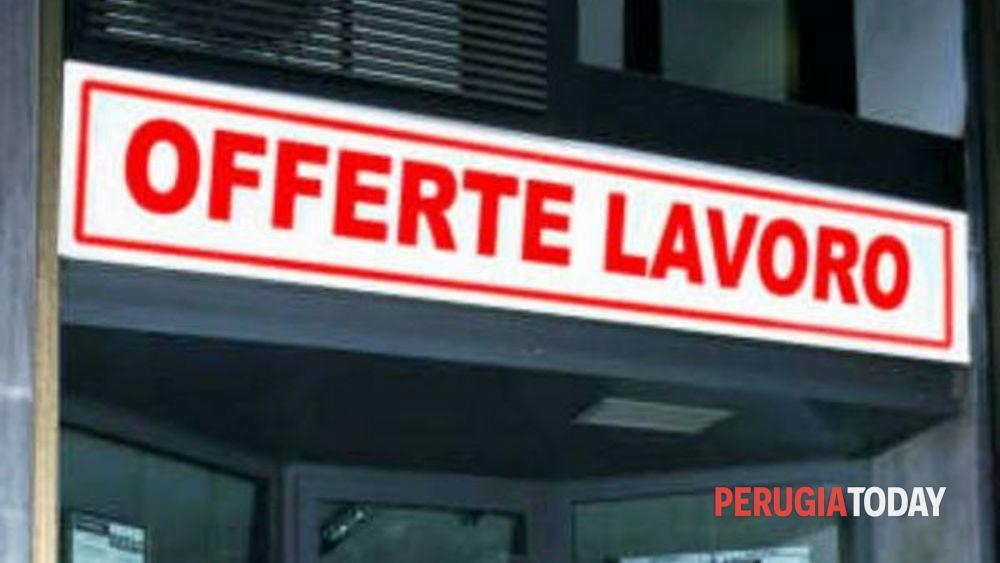 Ufficio Collocamento Novara : Obblighi relativi al collocamento mirato nelle aziende di